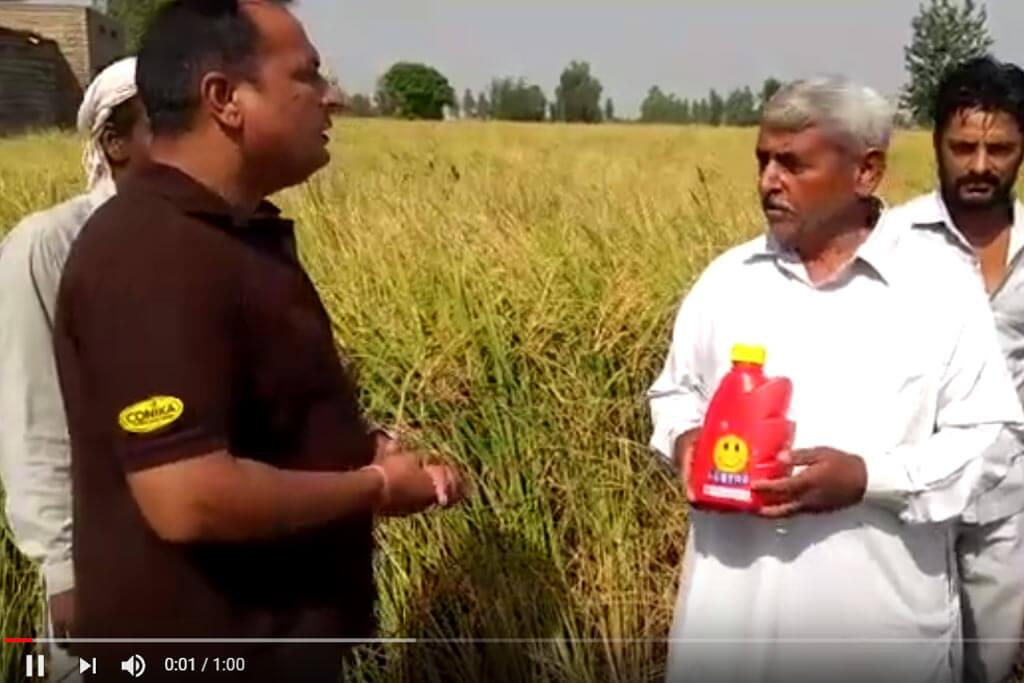Lustre on Basmati - Farmer Testimonial