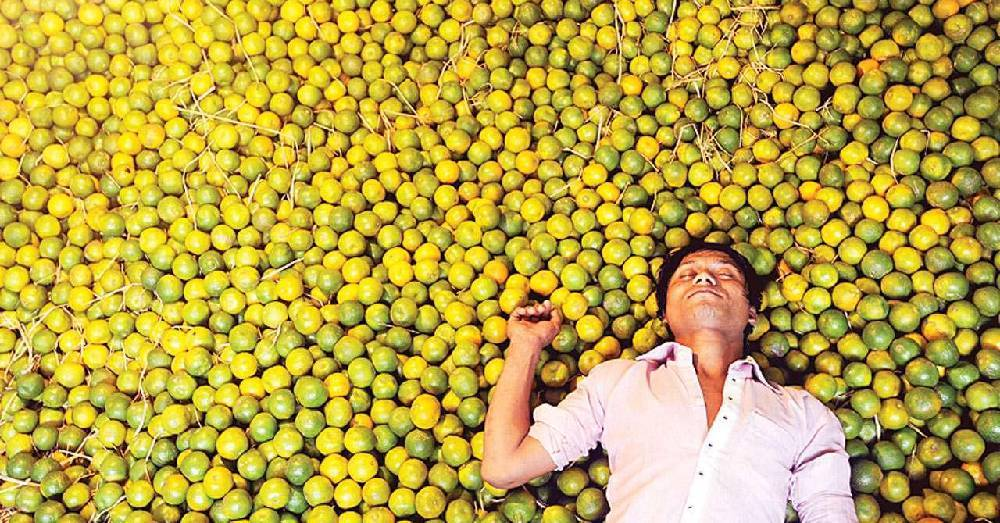 "Kinnow a ""King Fruit"" of Punjab- Problems and it's one stop crop solution"