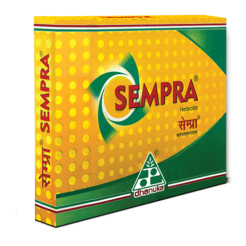 Sempra products