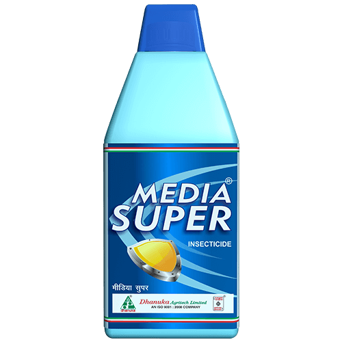 Media Super products